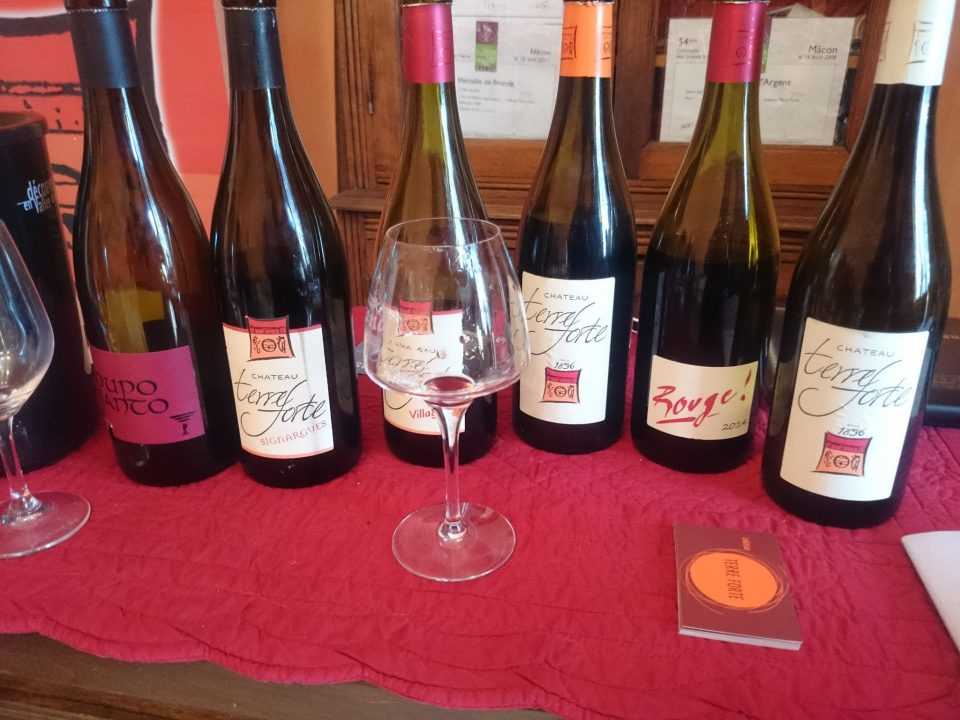 Degustace s vinaři: Château TERRE FORTE - Za rohem
