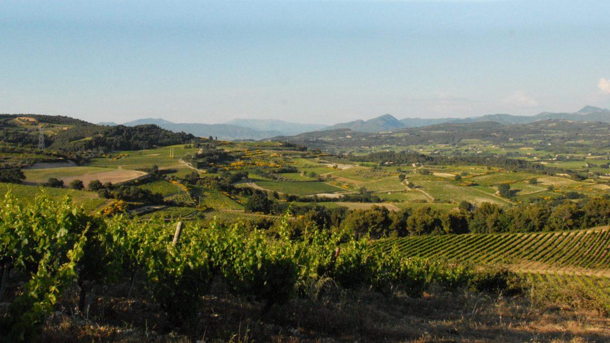 Cesta za vínem do Provence