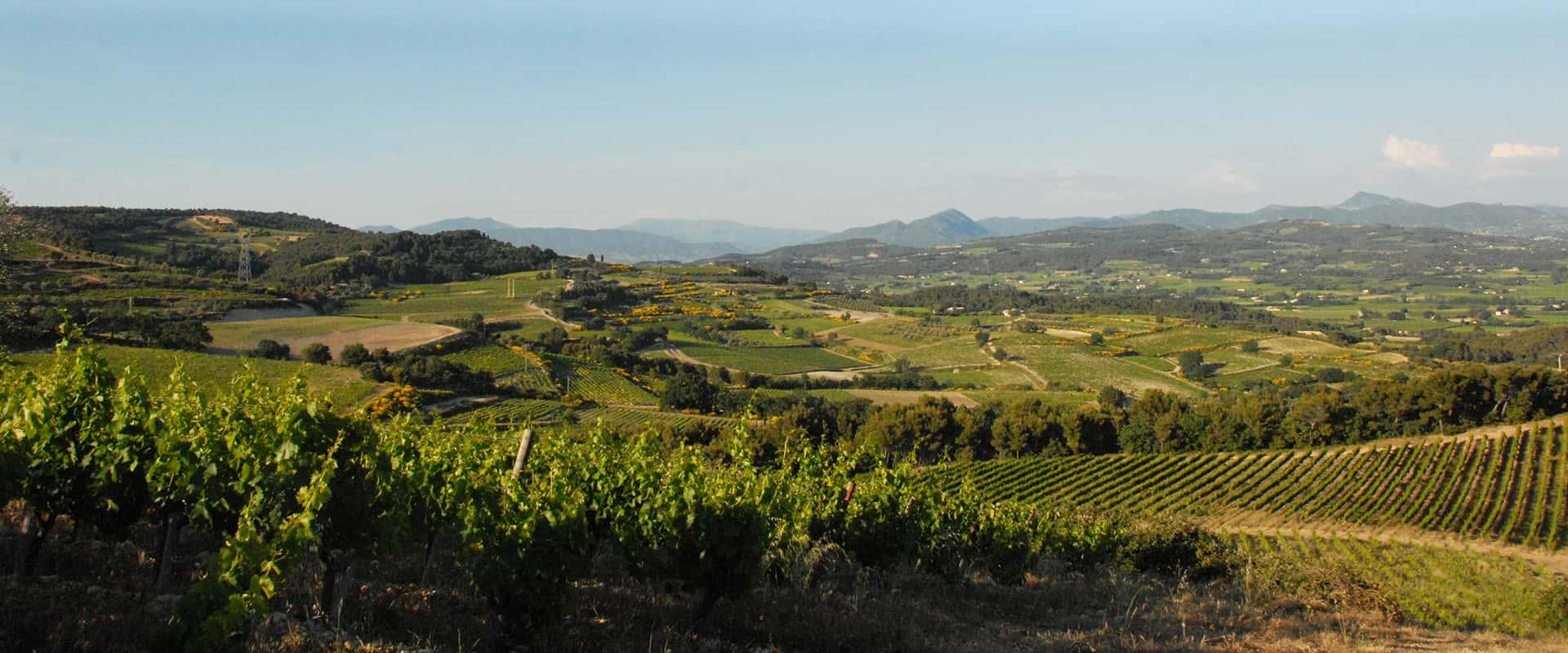 cesty za vinaři do Provence